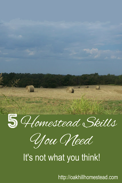 5 homestead skills you need that will surprise you.