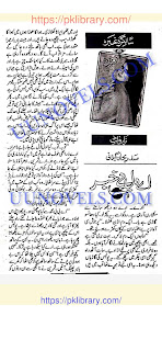 Aey dil e bekhabar by Sadaf Rehan Gilani Online Reading