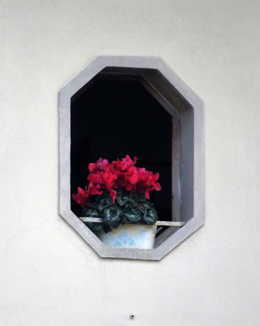 Octagonal window with flowers, Via del Porticciolo, Livorno