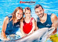 """Logo Concorso ''""""Amici dei delfini per sempre, amici dell'ambiente'': vinci gratis 10 soggiorni e ingressi ZooMarine"""