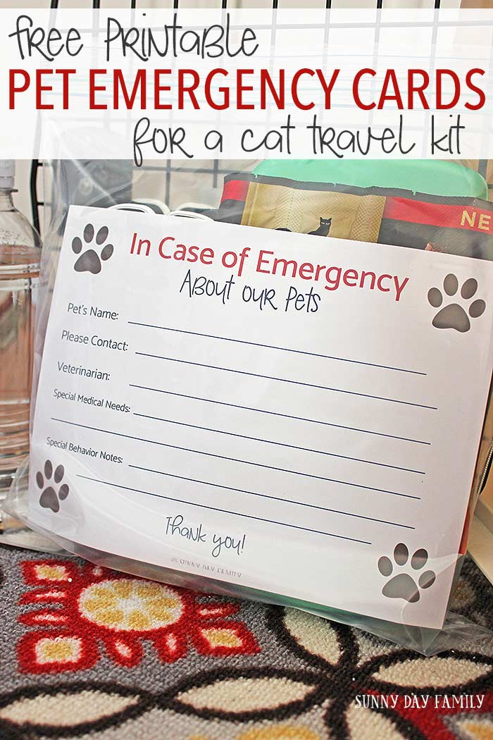 Traveling with your cat? Across town or across country, be sure to make a cat travel kit filled with essentials to keep your cat safe and comfortable. Includes free printable pet emergency card and free printable pet identification cards too!