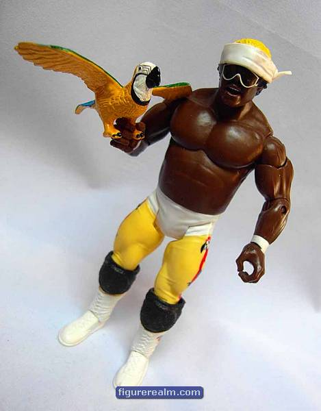 kiwi 39 s angels koko b ware with his macaw frankie. Black Bedroom Furniture Sets. Home Design Ideas