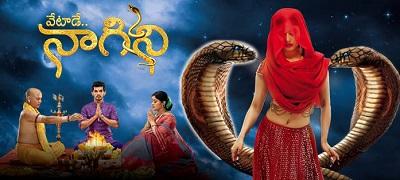 Naagini Telugu Gemini Tv, 05th December 2016, Watch Online Naagini Serial, Gemini Tv Serial, 05-12-2016 Episode 121