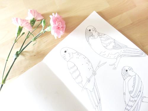 Emma Margaret Illustration Sketchbook 2016 Birds