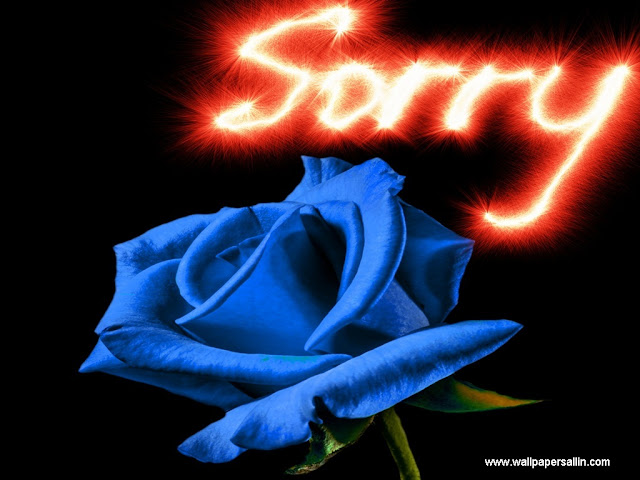 i am sorry wallpapers