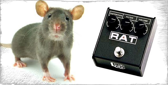 guitarratecnica.com - RAT Distortion