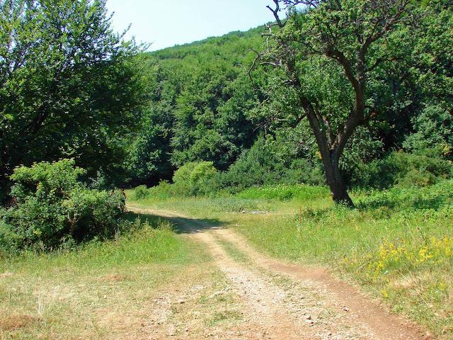 Буковая поляна - дорога на Эклизи-Бурун мимо горы Ангар-Бурун