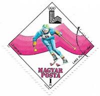 Selo Esqui alpino
