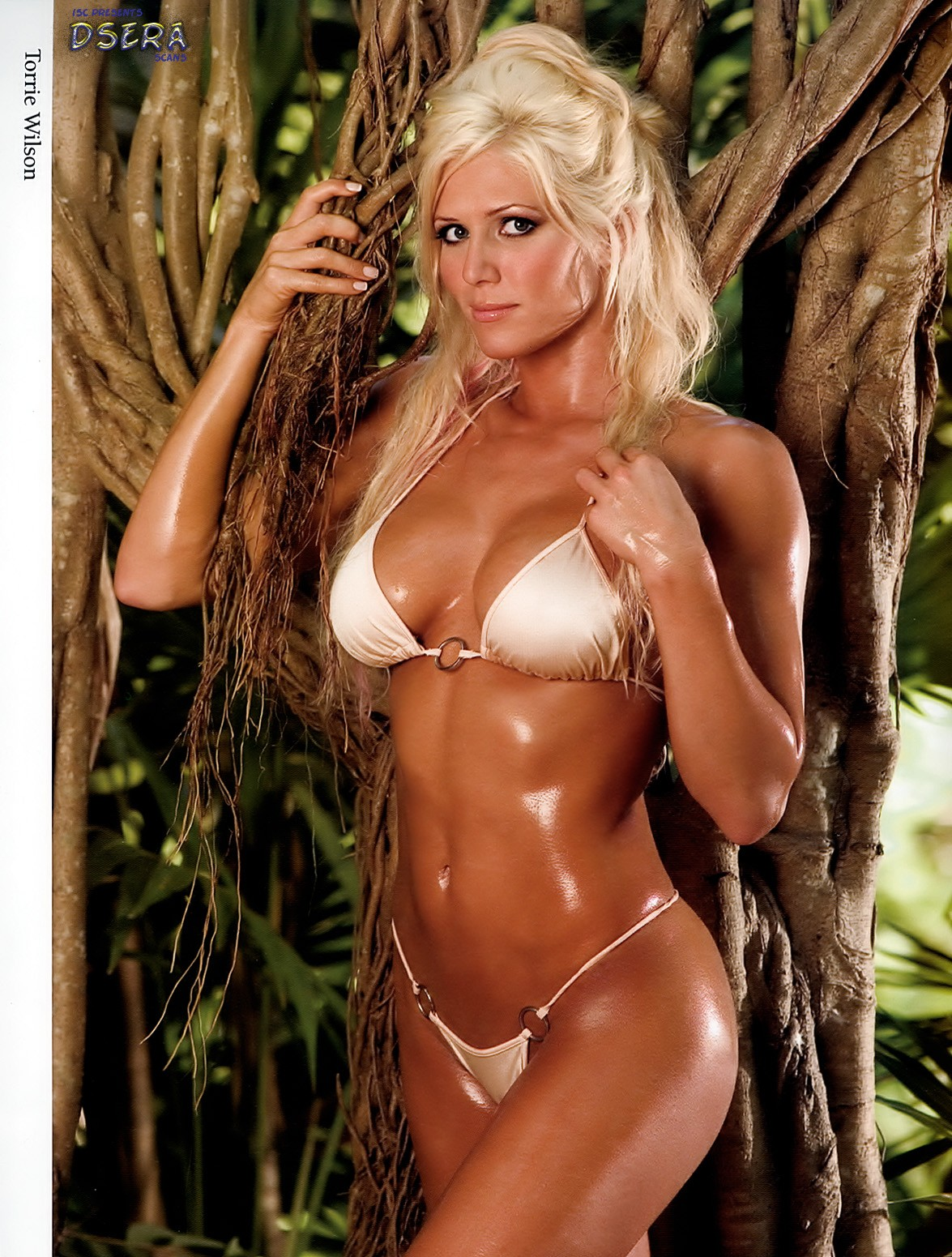 Agree, torrie wilson bikini useful