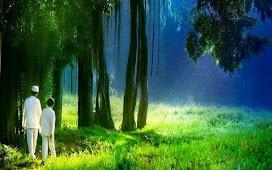 Pohon Di Surga