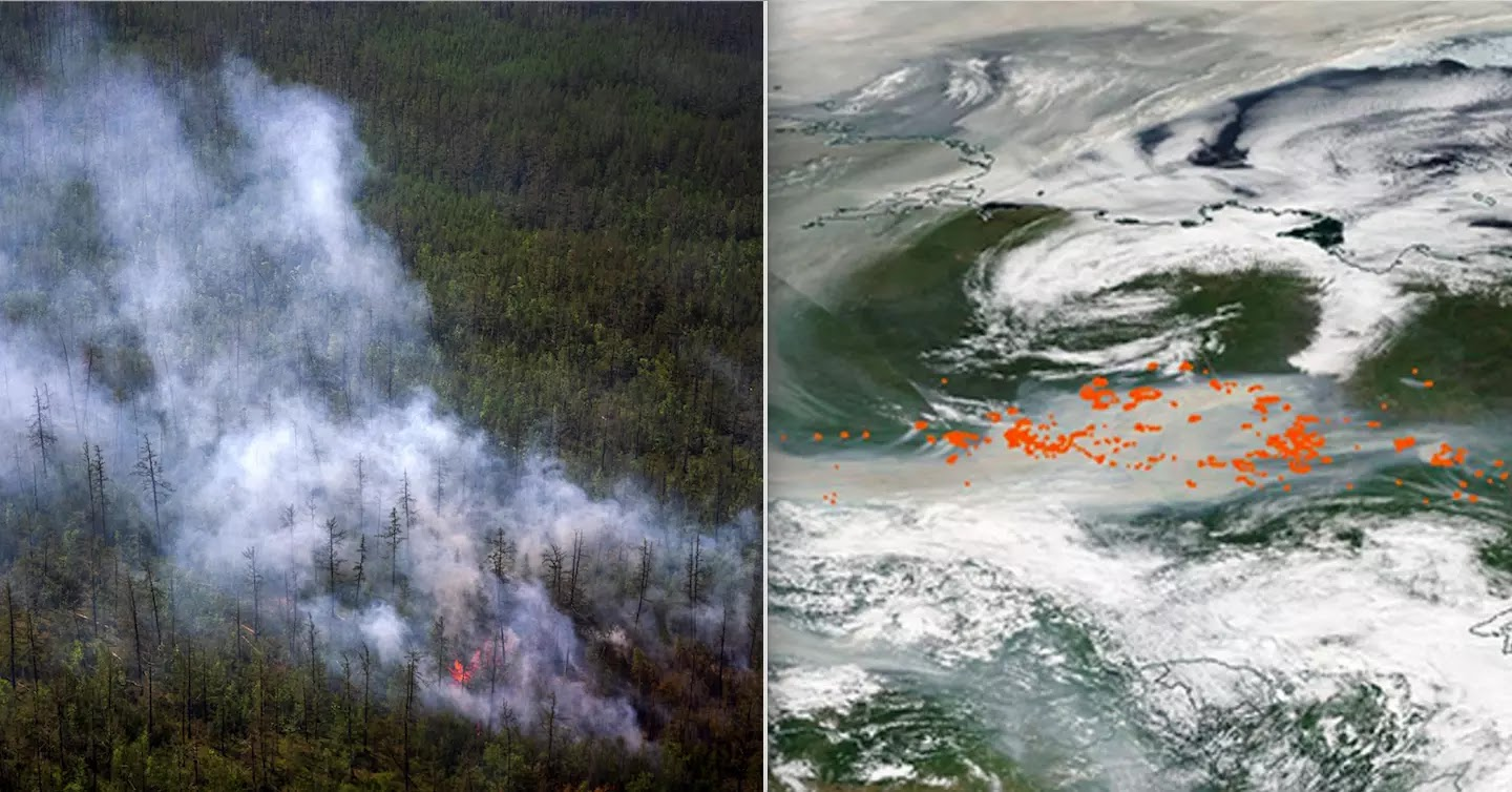Smoke From Wildfires Reaches The North Pole For The First Time In Recorded History