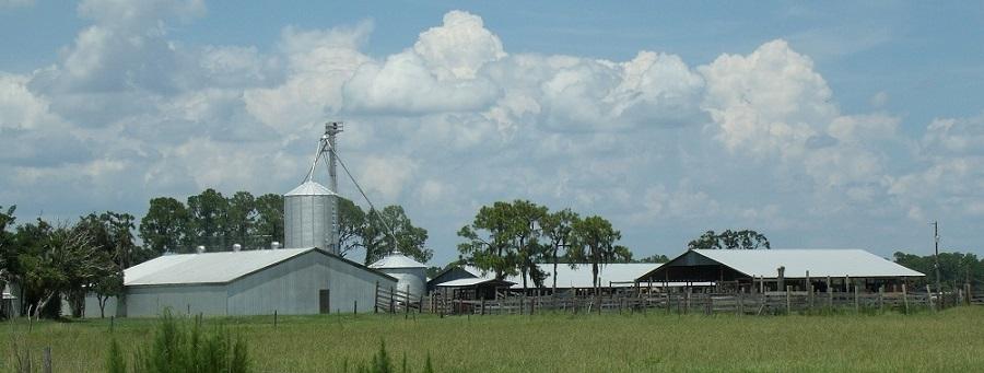 Ganaderías y granjas