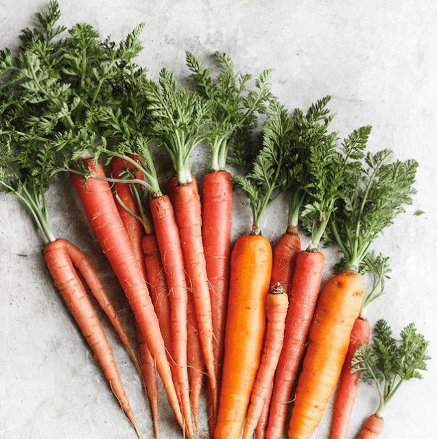 Cà Rốt với nhiều màu sắc khác nhau