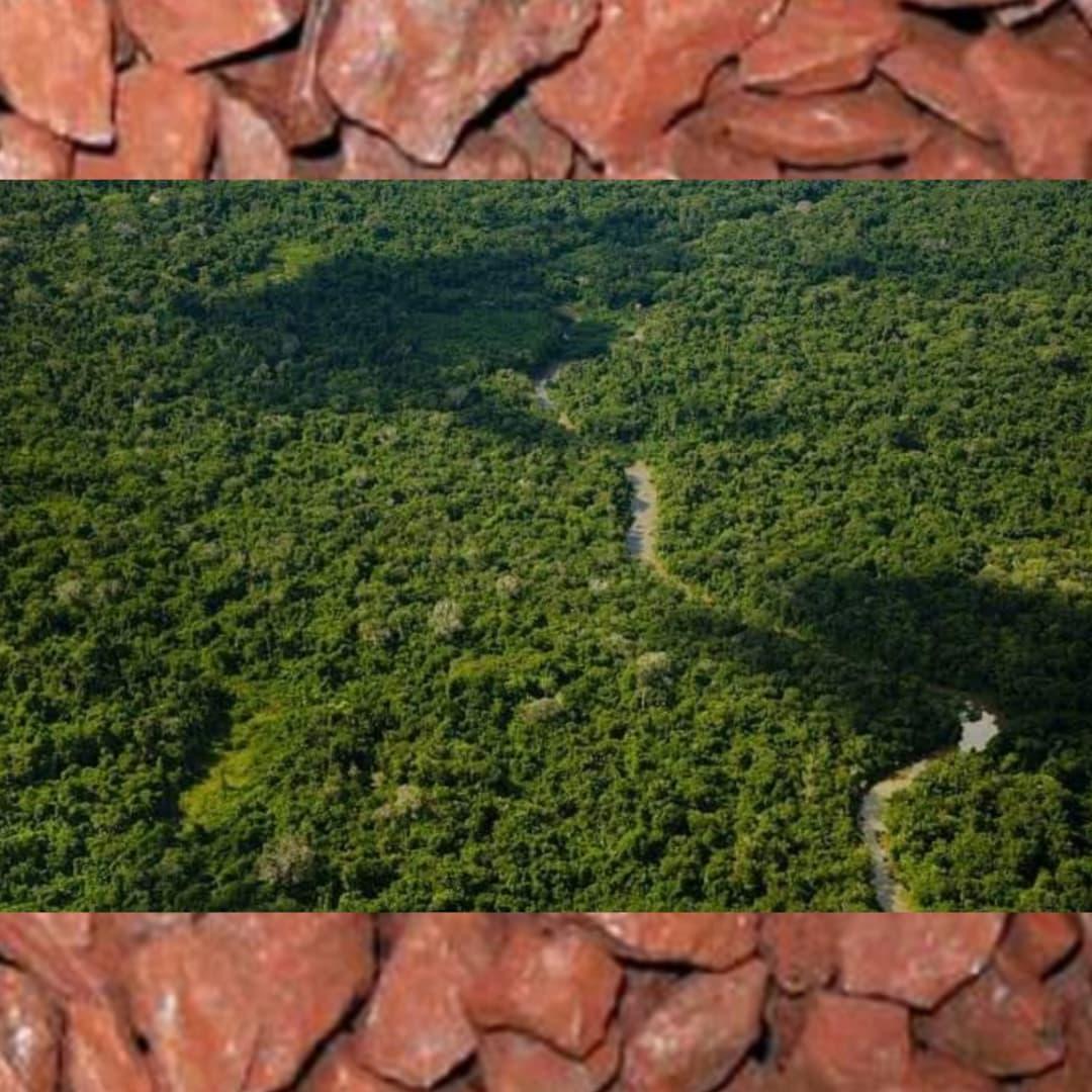 Vale decide devolver processos de mineração em terras indígenas