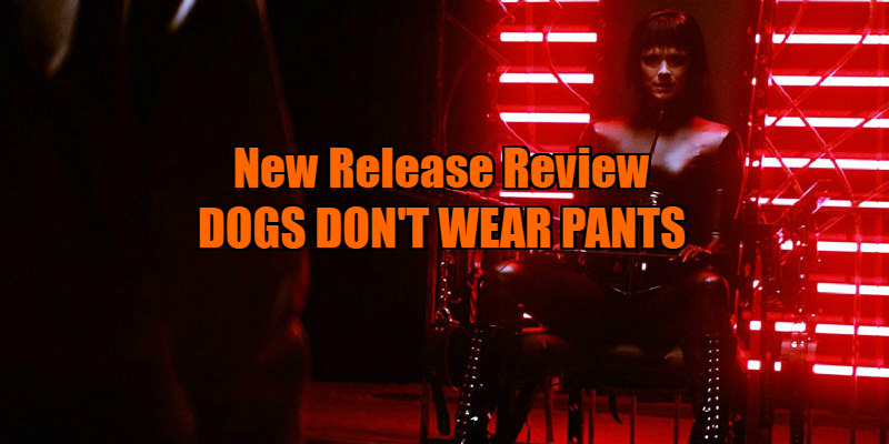 dogs don't wear pants review