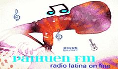 Radio Paihuen FM