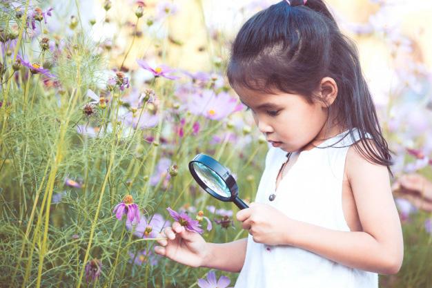 criança curiosa e o processo de aprendizagem