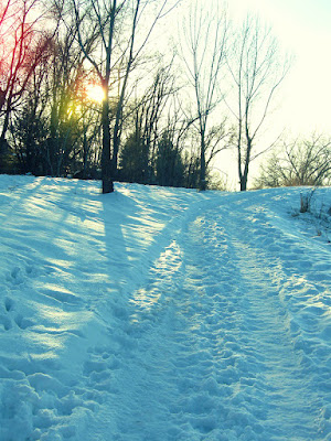 art photography winter nature sun dusk blue shadow