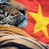 """Việt Nam: """"Con hổ Châu Á"""" mới đang trỗi dậy"""
