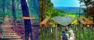 Wisata Panorama Petung Sewu Yang Menawarkan Banyak Ke indahan nya