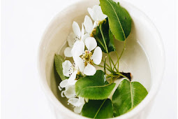 Health benefits of green tea with jasmine