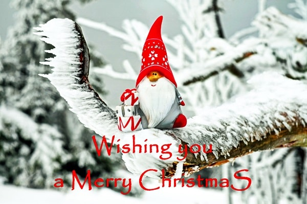 happy_Merry_christmas_Free_download_Stock_Images_Photos_Quotes and card new year