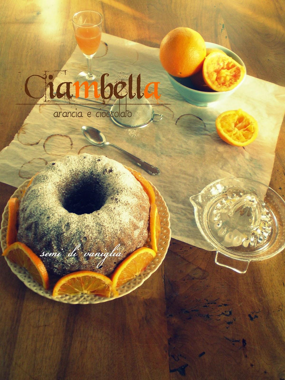 Immagine del dolce ciambella arancia e cioccolato dal blog Semi di vaniglia