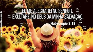 Eu me alegrarei no Senhor, exultarei no Deus da minha salvação.