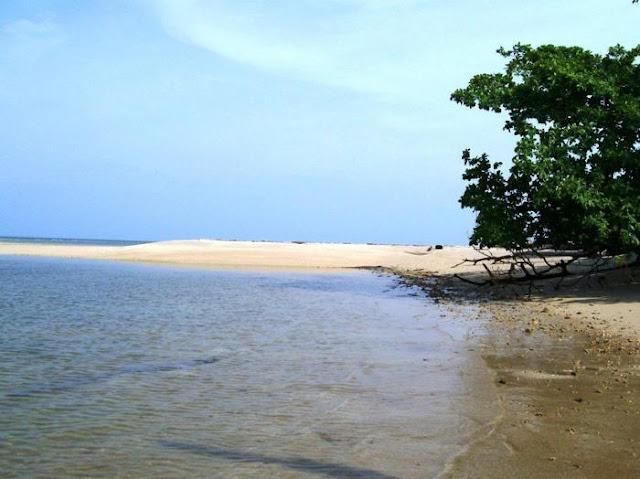 Pulau Maspari Yang Eksotis