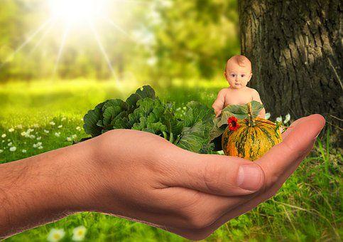 العناصر الغذائية التسعة التي يجب أن يحصل عليها كل طفل يوميًا