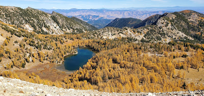 Image of Panorama of Cooney Lake and Fall Larches