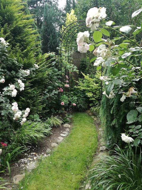 podział przestrzeni w ogrodzie