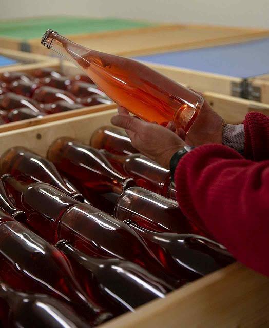 Vinho rosé produzido em Skaersogaard, Dinamarca
