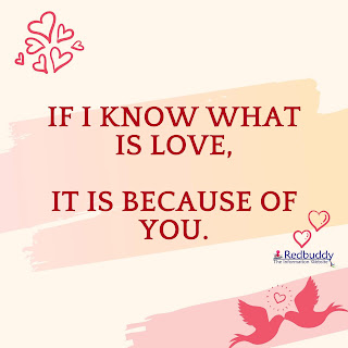 Love Quotes in English For WhatsApp