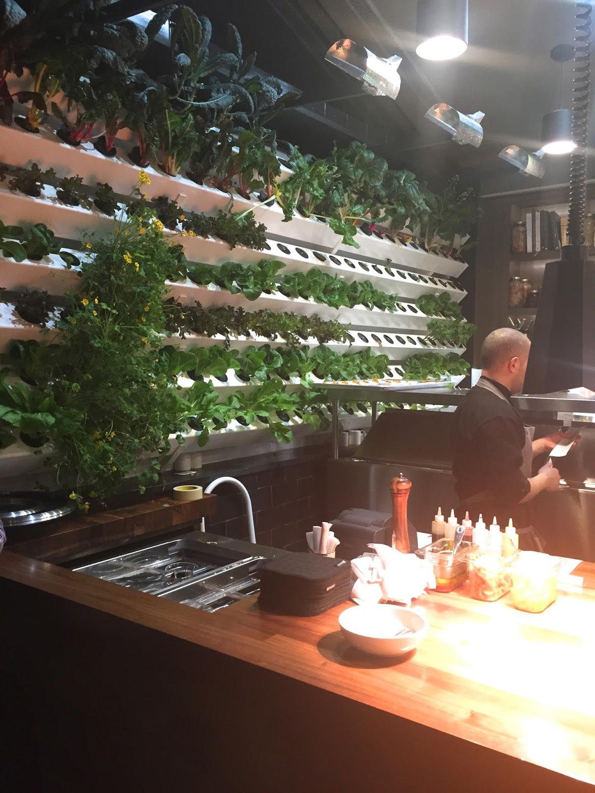 Indianapolis Restaurant Scene Vida