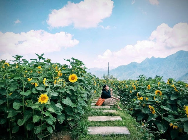 Have a charming Sapa through the lens of the young Vietnamese 3