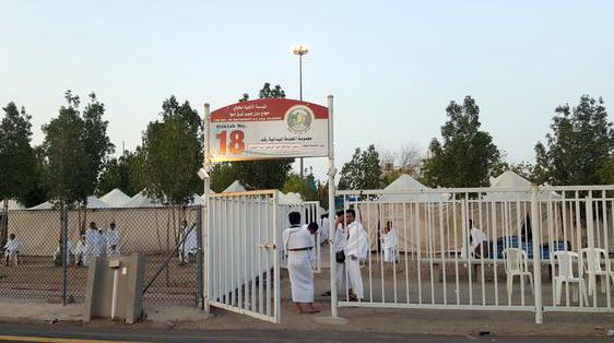Lantunan Talbiyah dan Sore yang Syahdu di Padang Arafah