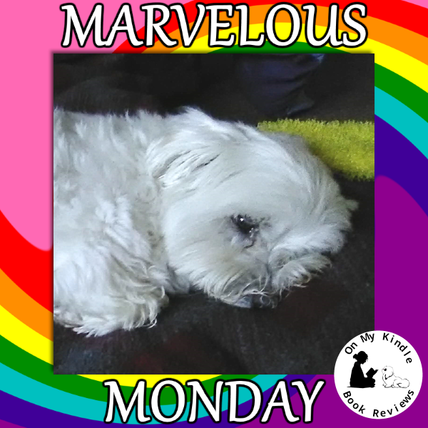 Second image for Marvelous Monday with Lexi: June 24th Edition!