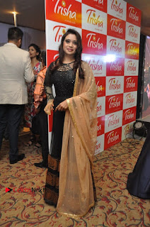 South Indian Celebrities Pos at Love For Handloom Collection Fashion Show  0039.jpg