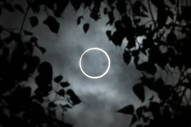 Solar Eclipse December 26: 10 Great Photos Taken Today