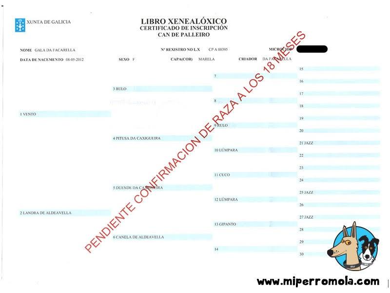 Certificado de Inscripción en el Libro Genealógico del Can de Palleiro
