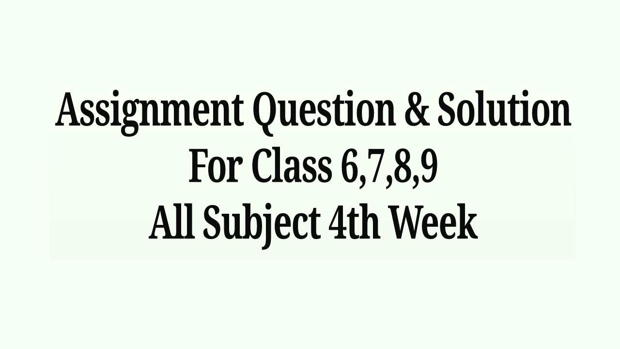 Assignment Question & Solution For Class 6,7,8,9 All Subject 4th Week