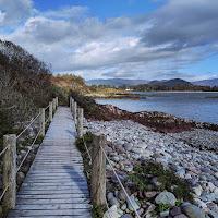 Images of Ireland: Boardwalk hike near Parknasilla