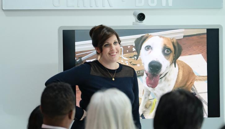 Downward Dog - Episode 1.05 - Trashed - Promotional Photos & Press Release