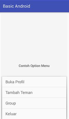 Screenshot_OptionMenu_Example