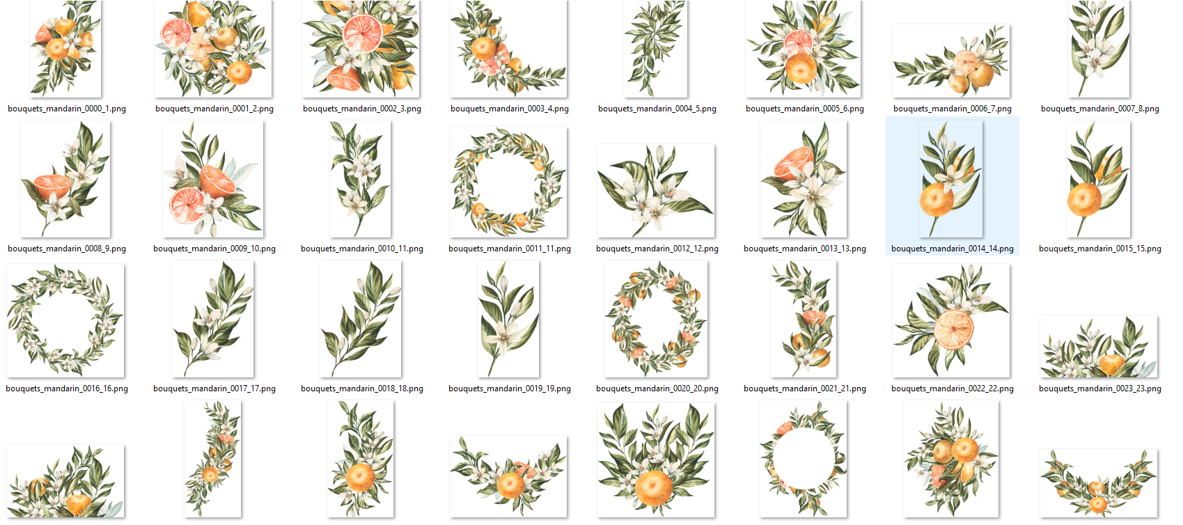 Cut-out png images of different flowers and flower motifs with the highest quality for printing on materials