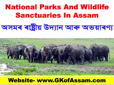 National Parks And Wildlife Sanctuaries In Assam