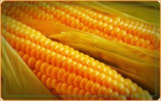 manfaat air rebusan jagung untuk kesehatan