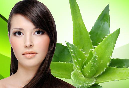 5 Manfaat lidah buaya untuk rambut Lebih Sehat