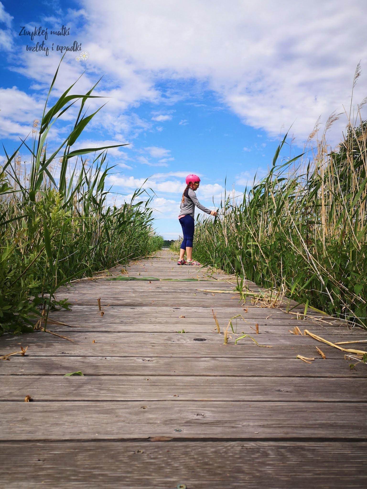 Co robić nad morzem, czyli trasa rowerowa wokół jeziora Liwia Łuża w Niechorzu
